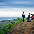 Love amongst the Lupins by MarcW