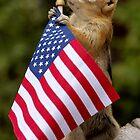Jasper On Flag Patrol  by Betsy  Seeton
