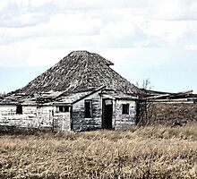 Their Old Prairie Home. by Leslie van de Ligt