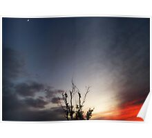 Sky Beauty Poster