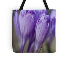 1093 . Crocus sativus . God bless you each and every day with much love and Joy and wonderful inside and out !! Tote Bag
