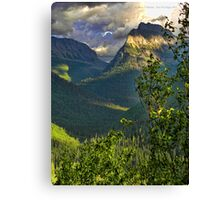 High Country - Glacier National Park Canvas Print