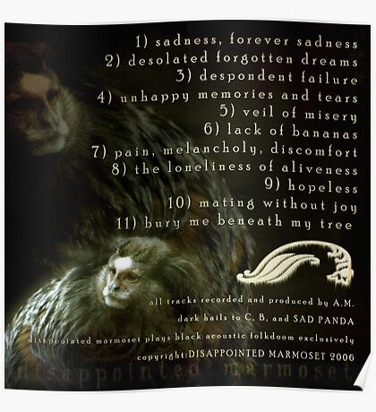 DISAPPOINTED MARMOSET - The Inevitable Failure of Existence (track listing)... Poster
