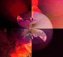 Summer madness by Susan Ringler