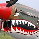 P-40 by Steven Squizzero