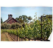 Turnbull Wine Cellars Poster