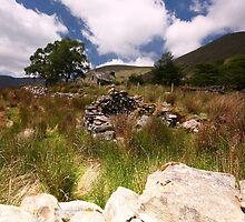 Valley Cottage- Kerry by Pascal Lee (LIPF)