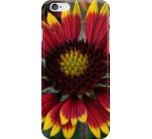 Indian Blanket Square iPhone Case/Skin