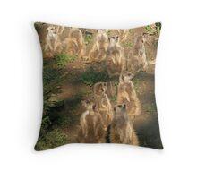 Meerkats of Oakland Zoo Throw Pillow