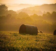 Summer hayfield in Wisconsin by KathyBerger