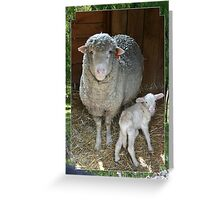 The Ewe and Her Lamb Greeting Card