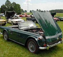 Triumph TR250 by Steve Mezardjian