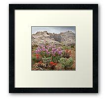 Wildflowers at Split Mountain Framed Print