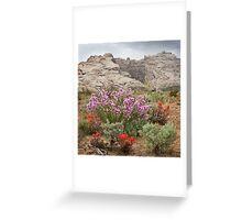Wildflowers at Split Mountain Greeting Card