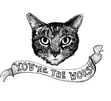 You're The Worst Cat  by writocified