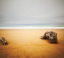 Wild Coast 2 by Pete Latham