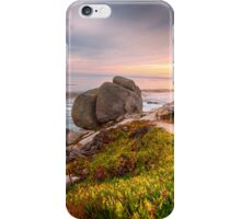 Monterey I iPhone Case/Skin