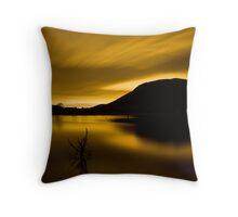 Golden Somerset Throw Pillow