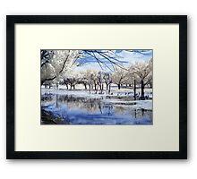 Eco Park IR Framed Print