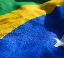 Brasil! by Steve Woods