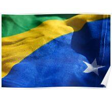 Brasil! Poster