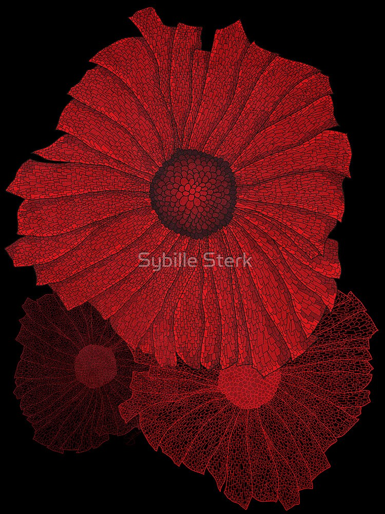 Poppies by Sybille Sterk