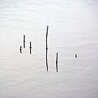 simplicity by lukasdf