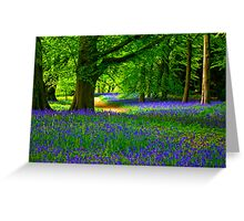 Bluebell Wood - Thorpe Perrow #3 Greeting Card