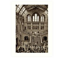 London Natural History Museum Art Print