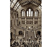 London Natural History Museum Photographic Print