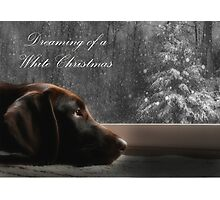 Dreaming of A White Christmas - Card Photographic Print