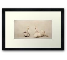 Fresh Garlic Framed Print