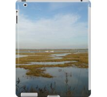 Marshes iPad Case/Skin