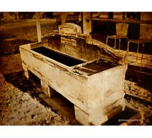 The horse trough Photographic Print