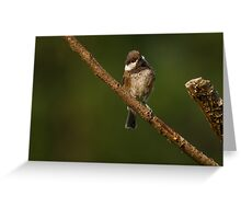 INQUISITIVE Greeting Card