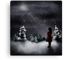 Christmas scene 2013 Canvas Print