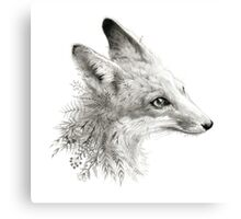 A Young Fox Canvas Print