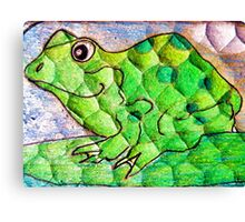 Frog funny textured colorful frog Canvas Print