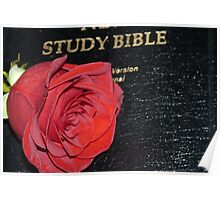 A Rose And The Bible Poster