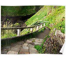 Cape Perpetua Walking Path....well worth it...Oregon Coast Poster