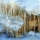 """""""Icy Conditions"""" by Lynn Bawden"""