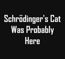 Schrodinger's Cat Was Probably Here Kids Clothes