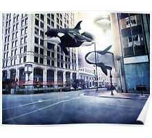 City of whales Poster