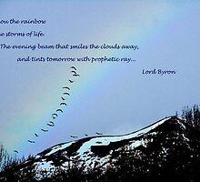 Light a Rainbow... by tkrosevear