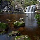 Pencil Pine Falls - Tasmania by Michael Treloar