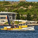 Fishing Boat - Newcastle Harbour NSW Australia by Phil Woodman