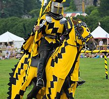 The Yellow Knight by buttonpresser