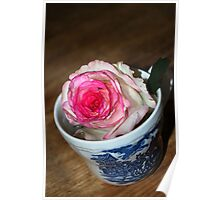 Cuppa Rose Poster