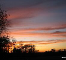 October Sunset by Debbie Robbins