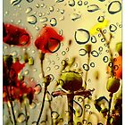 [ rainy summer ] by MelAncholyPhoto
